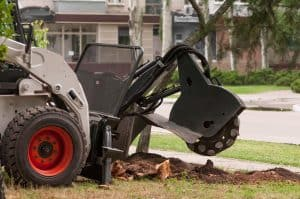 stump grinding Asheville